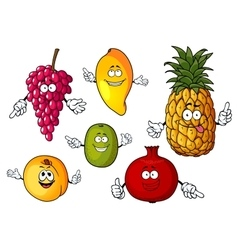 Cartoon happy fresh fruits characters vector