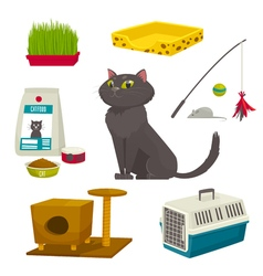 Cat object set items and stuff cartoon vector