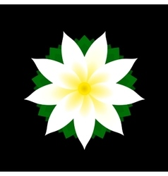 Jasmine Flower Icon on Black Background vector image