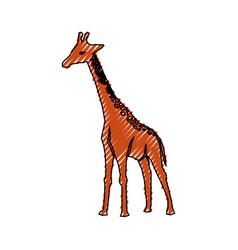 Giraffe cartoon animal vector