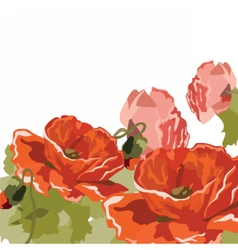 Vintage watercolor poppy flower vector