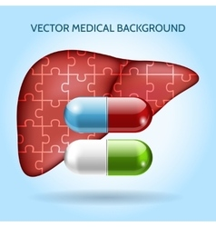 Liver puzzle and pills medical background vector