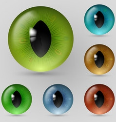 Eyes reptiles vector