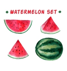 watercolor hand drawn watermelon set vector image