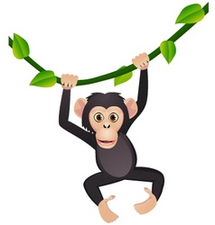 chimpanzee cartoon vector image vector image
