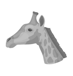 giraffe icon in monochrome style isolated on white vector image vector image