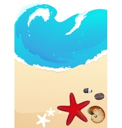 Sea beach with starfish vector image vector image