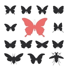 Butterflies cicada set isolated silhouette on vector