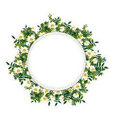 Flower frame with white chamomile vector