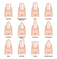 Nail shape set2 resize vector