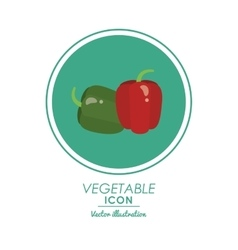 Pepper icon healthy food design graphic vector