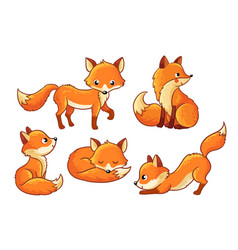 set of cute cartoon foxes in cartoon style vector image vector image
