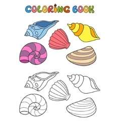 shell set vector image vector image