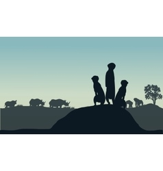 Silhouette of meerkat and rhino vector