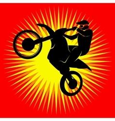Motocross racer vector image