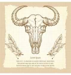 Buffalo skull on vintage background vector image vector image