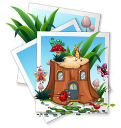 different types of bugs in garden vector image vector image