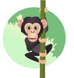chimpanzee cartoon vector image vector image