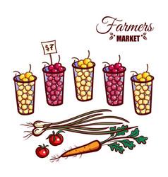 farmers market berries vegetables vector image vector image