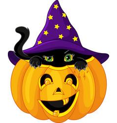 kitten in pumpkin vector image vector image