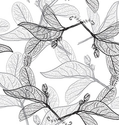 Leaves contours on a white background floral vector image vector image