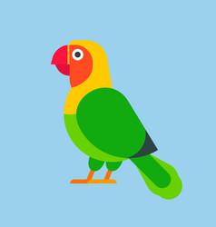 Parrot green bird breed species animal nature vector