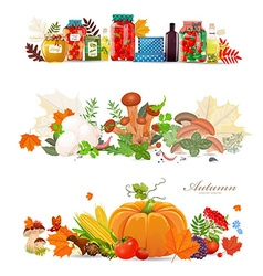 collection borders with preserve food and vector image