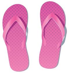 pair of flip flops vector image vector image