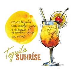 Tequila sunrise vector