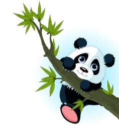 giant panda climbing tree vector image