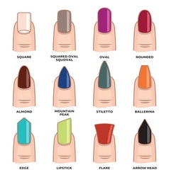 Nail shape set4 resize vector