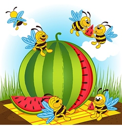 Bees and watermelon vector