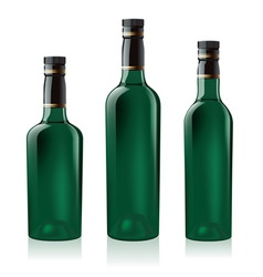green wine bottles vector image