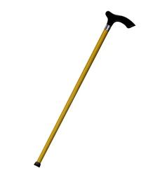 Wooden cane vector