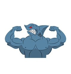 Strong shark athlete fish bodybuilder with huge vector