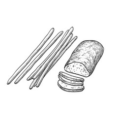 ciabatta and bread sticks vector image vector image