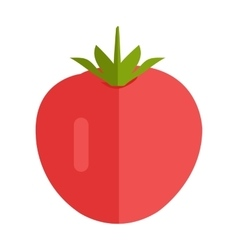 Tomato in Flat Style Design vector image
