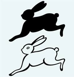 Running hare vector image