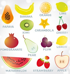 Fresh bright juicy fruits set on a white vector