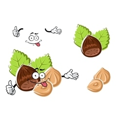 Cartoon whole and peeled hazelnut vector image