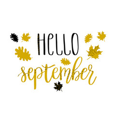 Hello september lettering text with autumn leaves vector