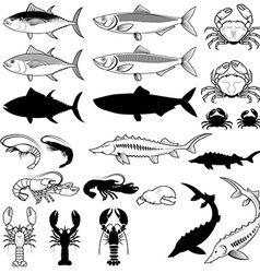 Set of the fish crabs shrimps lobsters design vector image vector image