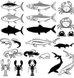 Set of the fish crabs shrimps lobsters design vector image