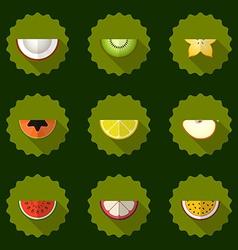 Fruit set background Include apple coconut papaja vector image