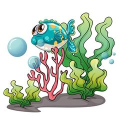A fish under the sea near the seaweeds vector
