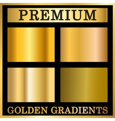 Gold texture in frame set vector image vector image