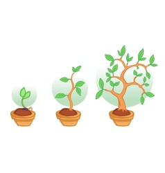 Growing tree vector