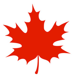 red maple leaf vector image vector image