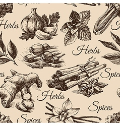 Seamless pattern of kitchen herbs and spices vector