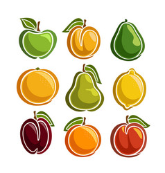 Set colorful fruits icons vector